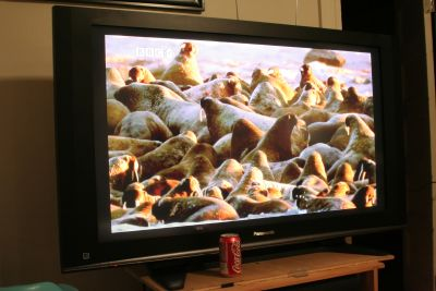 new-tv.jpg